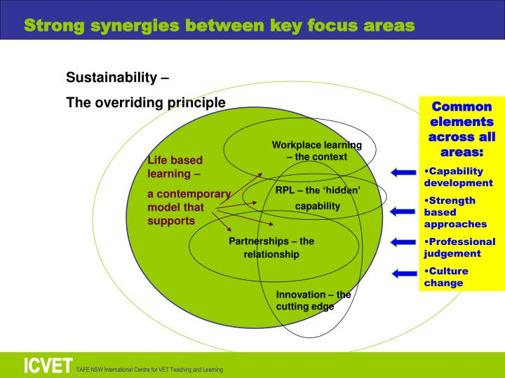 Strong synergies between key focus areas