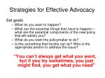 strategies for effective advocacy3