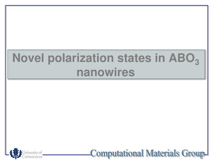 Novel polarization states in ABO
