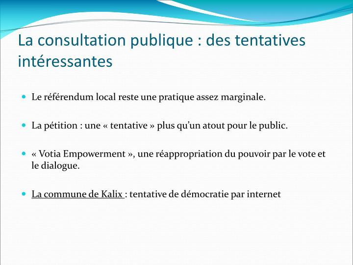 La consultation publique : des tentatives intéressantes