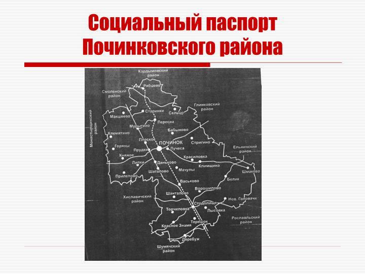 Социальный паспорт Починковского района