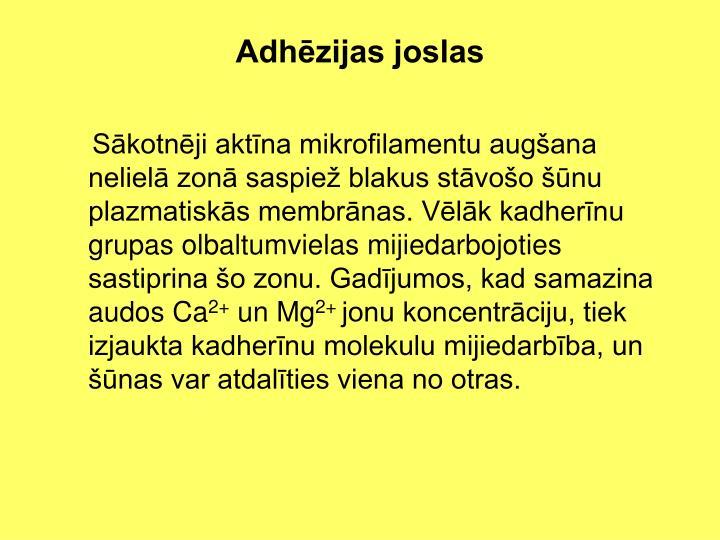 Adhēzijas joslas