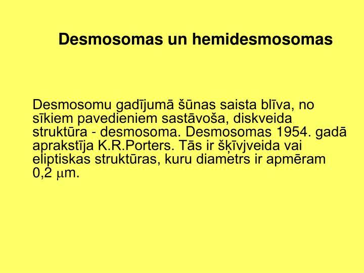 Desmosomas un hemidesmosomas