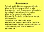 desmosomas1