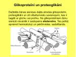 glikoprote ni un proteoglik ni