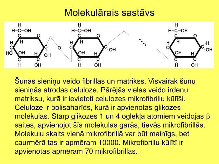 Molekulārais sastāvs