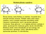 molekul rais sast vs