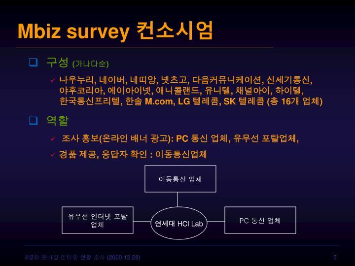 Mbiz survey