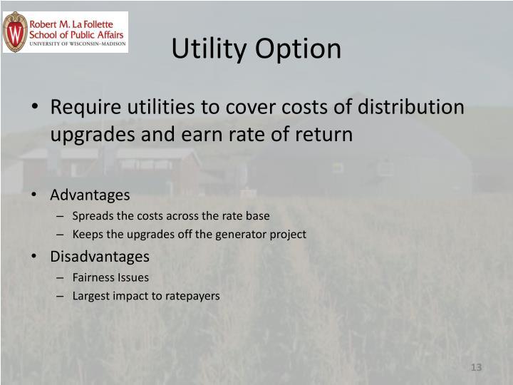 Utility Option