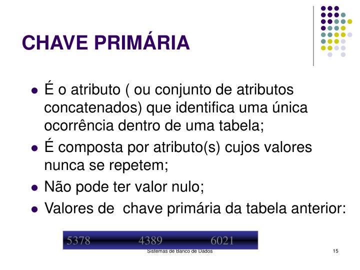 CHAVE PRIMÁRIA
