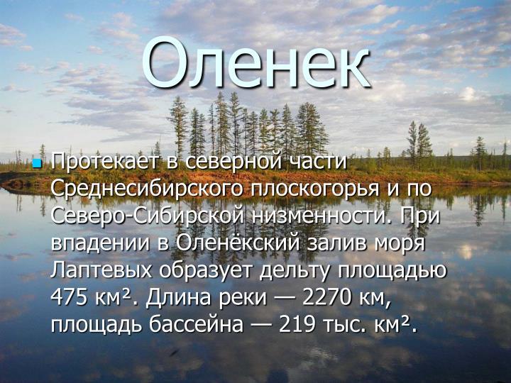 Оленек