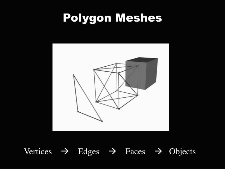 Polygon Meshes