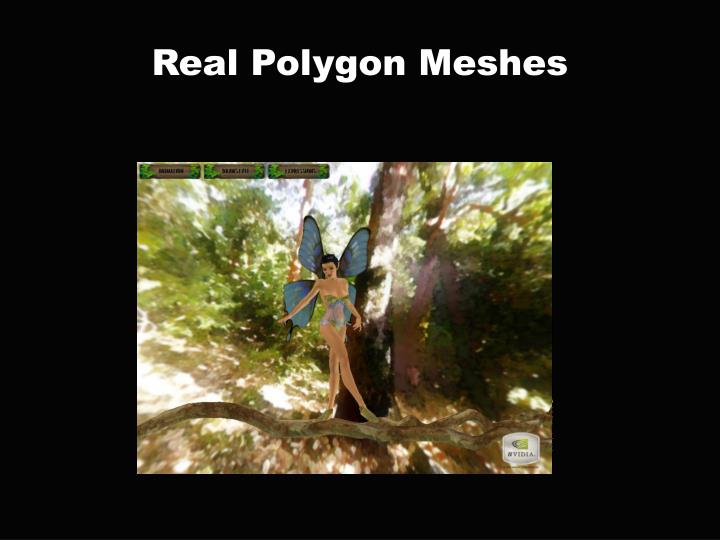 Real Polygon Meshes