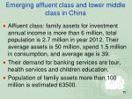 emerging affluent class and lower middle class in china