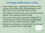 emerging middle class in china1