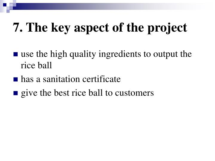 7. The key aspect of the project