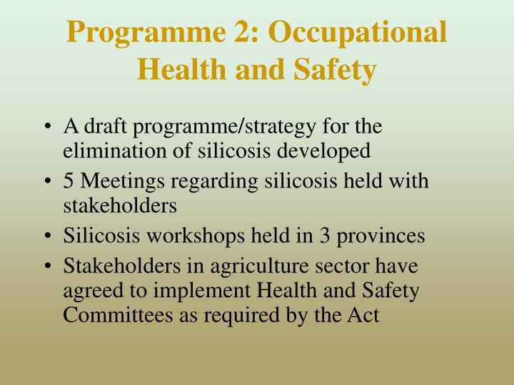 Programme 2: Occupational Health and Safety