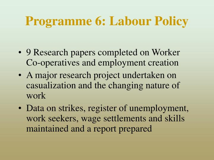 Programme 6: Labour Policy
