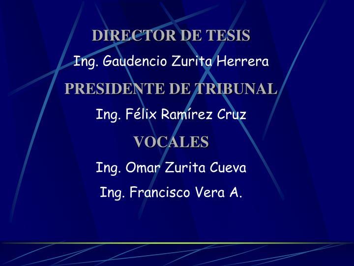 DIRECTOR DE TESIS