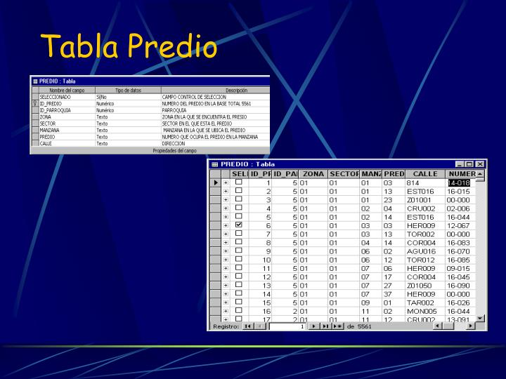 Tabla Predio
