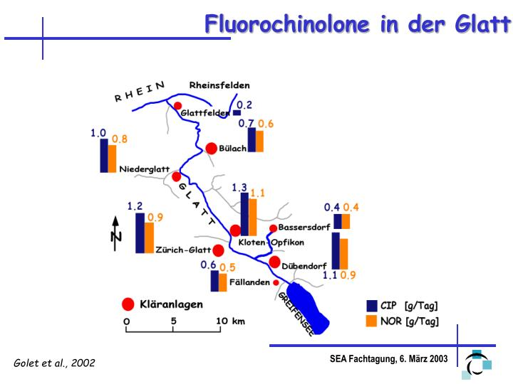 Fluorochinolone in der Glatt