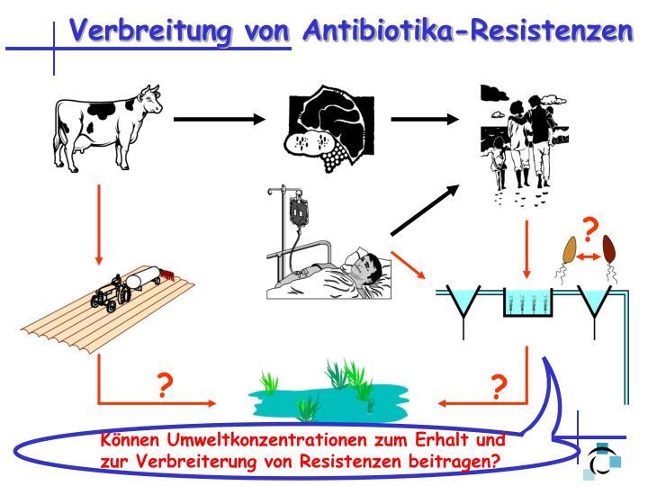 Verbreitung von Antibiotika-Resistenzen