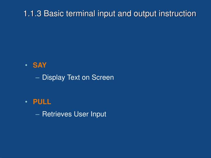 1.1.3 Basic terminal input and output instruction