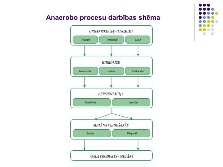 Anaerobo procesu darbības shēma