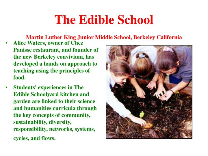 The Edible School