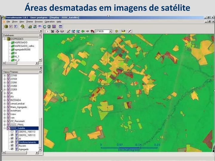 Áreas desmatadas em imagens de satélite
