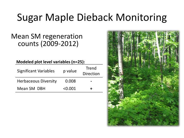 Sugar Maple Dieback Monitoring