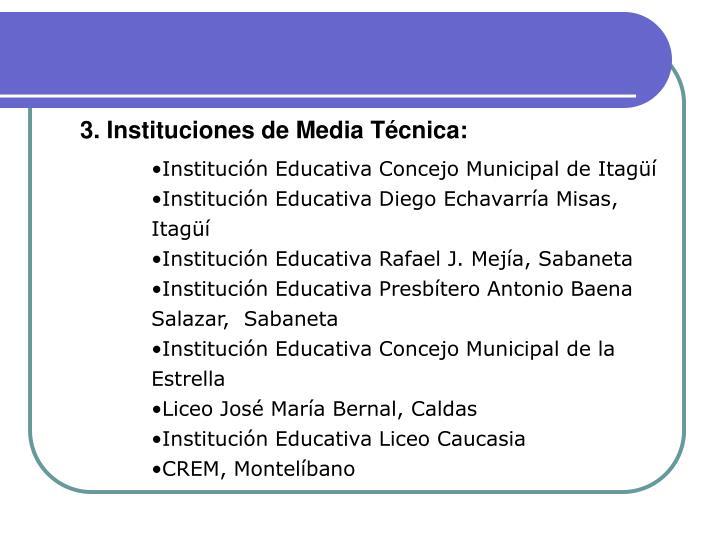 3. Instituciones de Media Técnica: