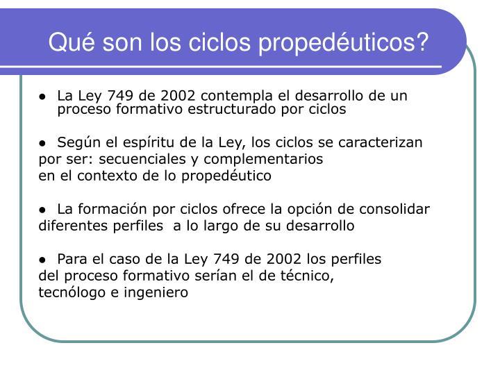 Qué son los ciclos propedéuticos?