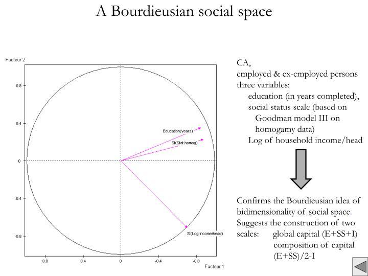 A Bourdieusian social space