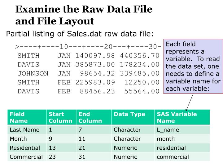Examine the raw data file and file layout