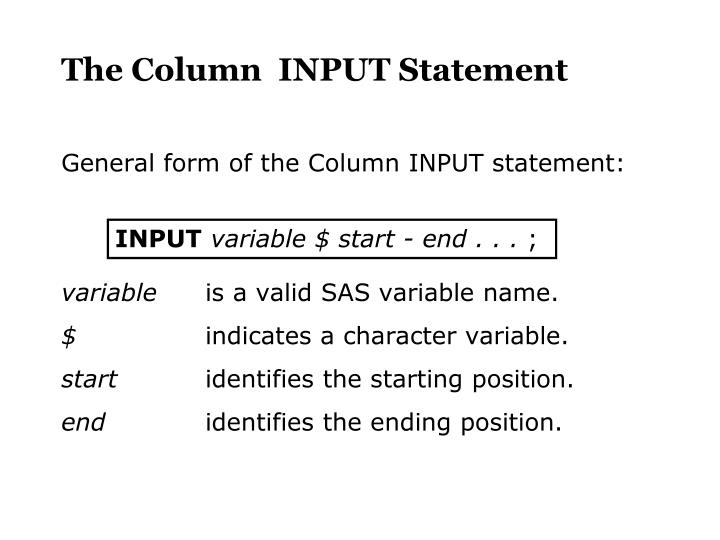 The Column  INPUT Statement