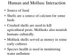 human and mollusc interaction