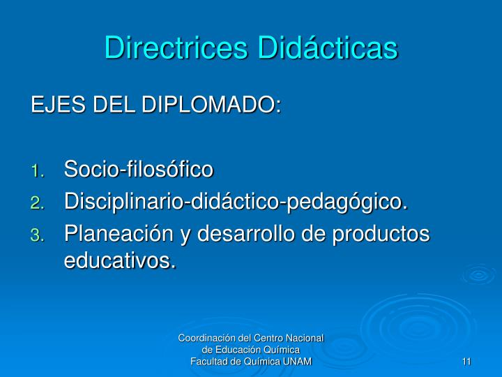 Directrices Didácticas