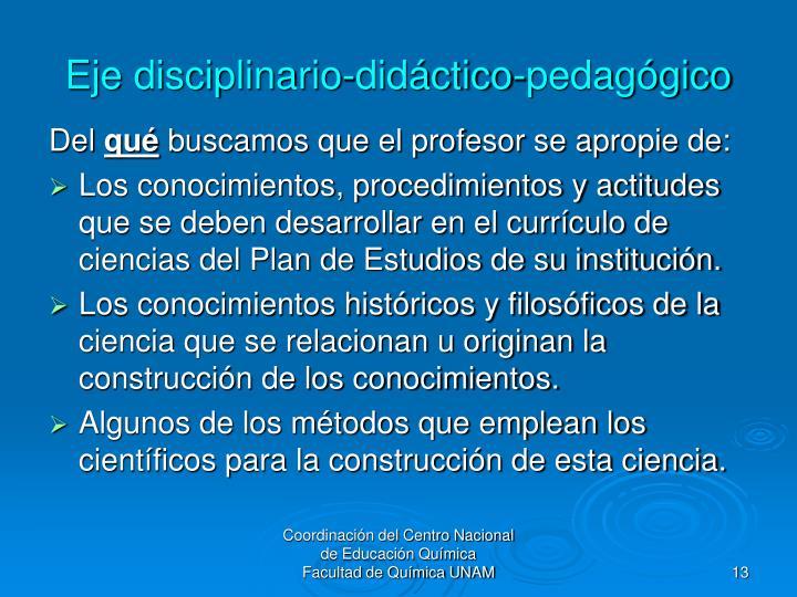 Eje disciplinario-didáctico-pedagógico