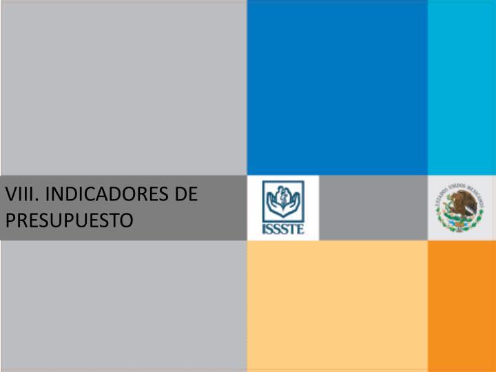 VIII. INDICADORES DE PRESUPUESTO