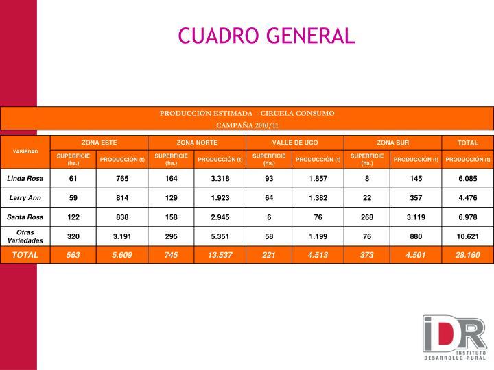 CUADRO GENERAL