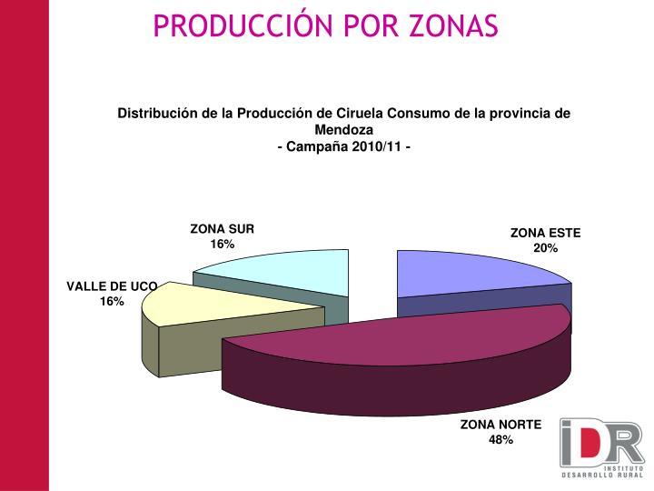 PRODUCCIÓN POR ZONAS
