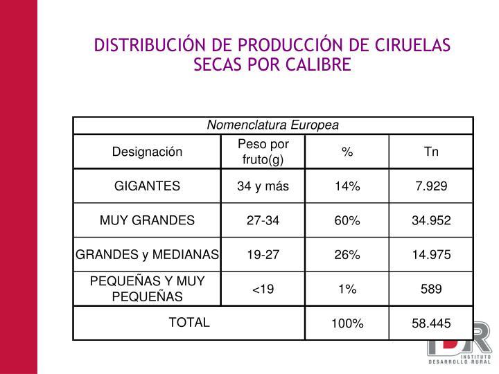 DISTRIBUCIÓN DE PRODUCCIÓN DE CIRUELAS SECAS POR CALIBRE