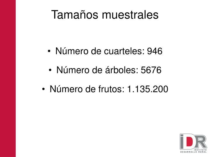 Número de cuarteles: 946