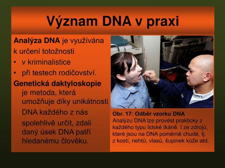 Význam DNA v praxi
