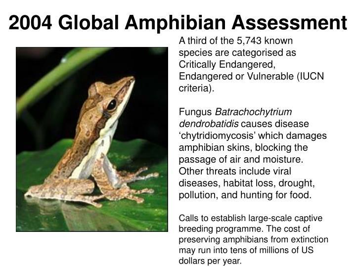 2004 Global Amphibian Assessment