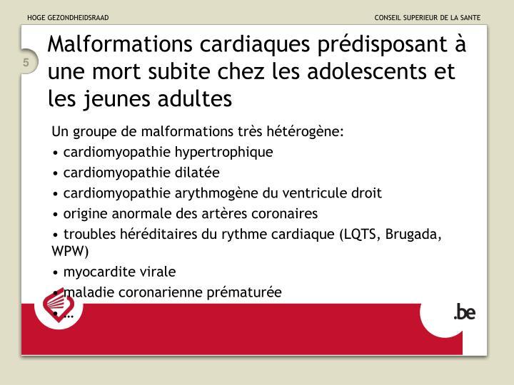 Malformations cardiaques prédisposant à une mort subite chez les adolescents et les jeunes adultes