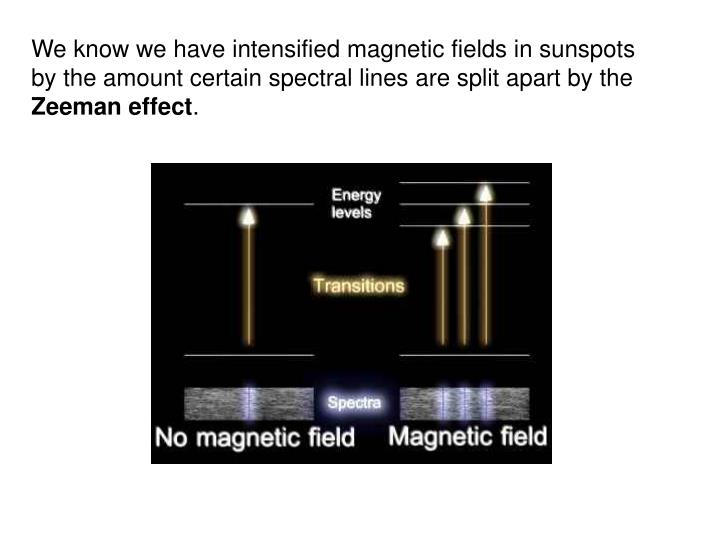We know we have intensified magnetic fields in sunspots