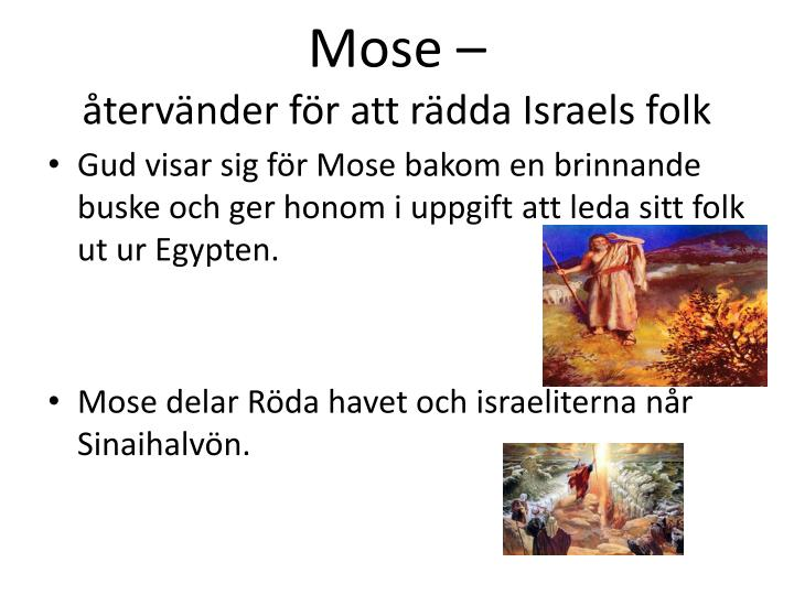 Mose –
