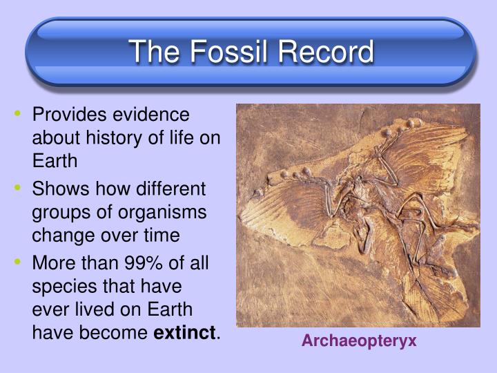 fossil record dating assumptions Here is how carbon dating works and the assumptions it is based  i can think of  no cases of radioactive decay being used to date fossils.